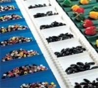 蔬菜类食品输送带